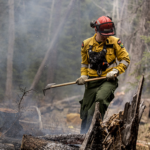 Firefighter in a forest fire